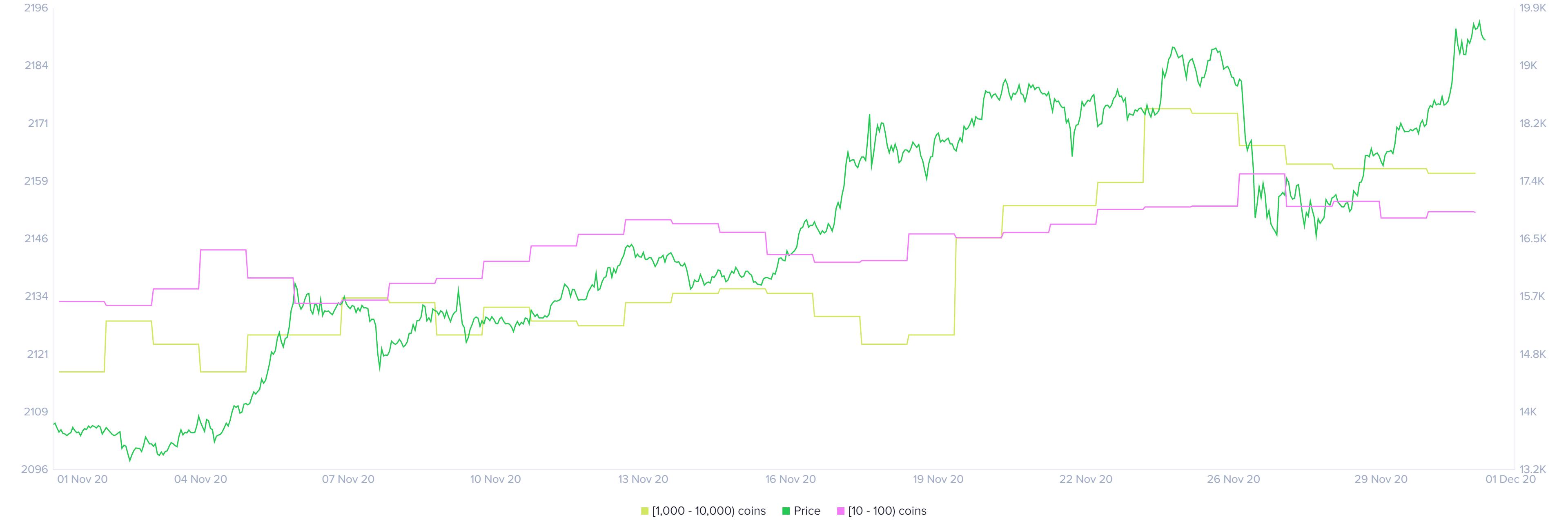 Bitcoin holder distribution chart